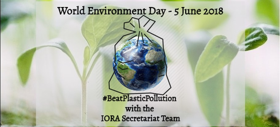 paragraph on world environment day