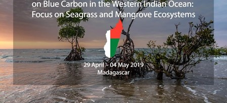 IORA Workshop on Improving Knowledge for Research on Blue Carbon in the Western Indian Ocean: Focus on Seagrass and Mangrove Ecosystems